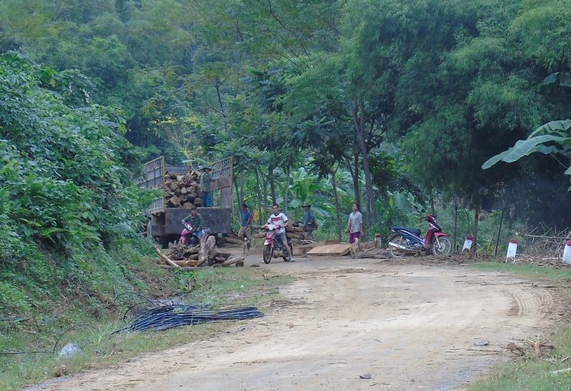 Sau lũ, gỗ bạt ngàn trôi từ trong rừng ra.