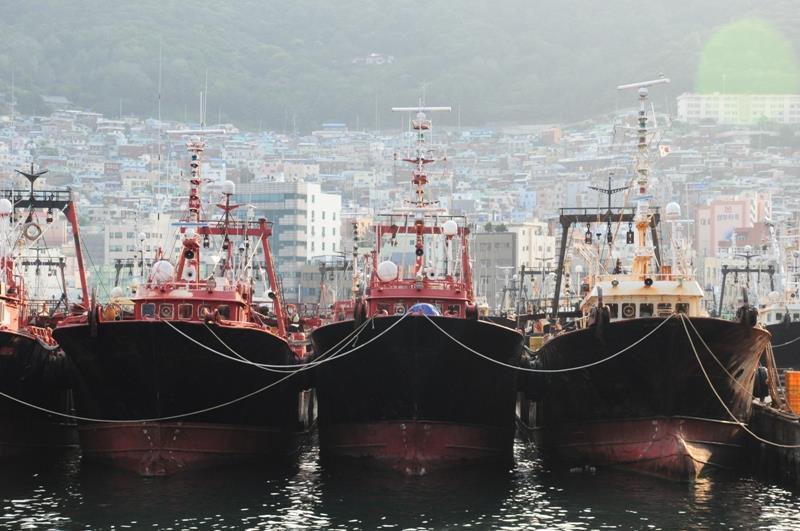 Có dịp đến với thành phố Busan, Hàn Quốc, bạn hãy ghé thăm chợ cá Jagalchi trong bất kể giờ nào để được tận mắt chứng kiến sự nhộn nhịp và cách thức tổ chức một khu chợ cá và ngắm nhìn cảng cá lớn nhất xứ Kim Chi.