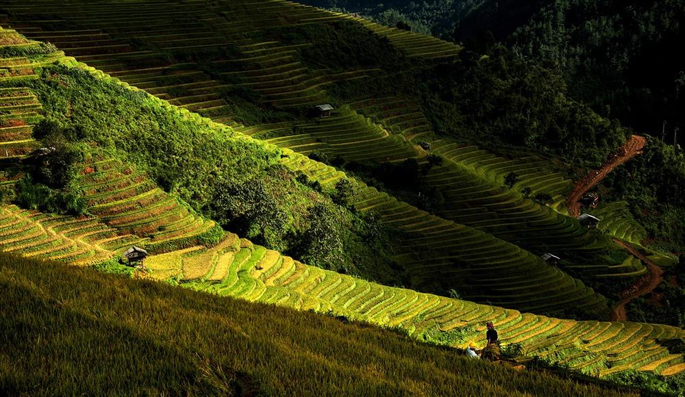 Nắng Tây Bắc - Huỳnh Lãnh.