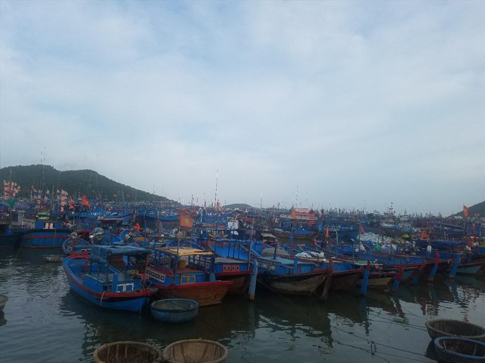 Người và phương tiện trên biển phải sơ tán, neo đậu an toàn trước 16 giờ chiều nay.