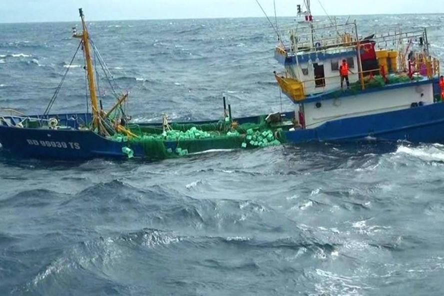3 tàu hàng bị chìm khi đang tránh bão số 12. Ảnh minh họa.