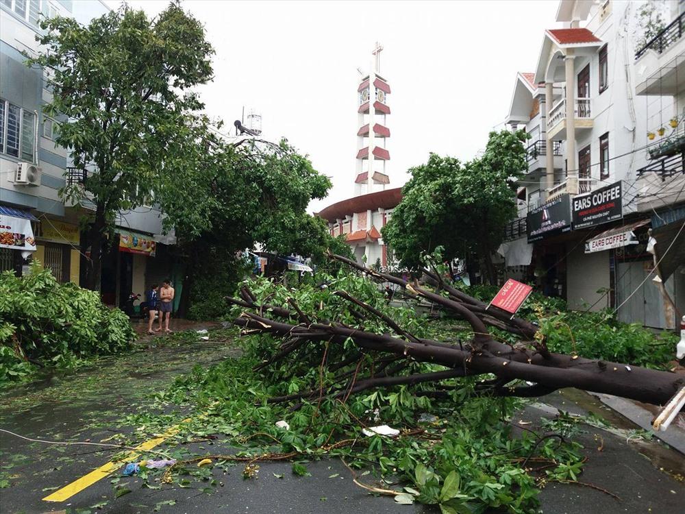 Sau một ngày khắc phục, ở Khánh Hòa nhiều nơi cây cối vẫn còn ngỗn ngang nên vẫn tiếp tục cho học sinh một số nơi nghỉ học