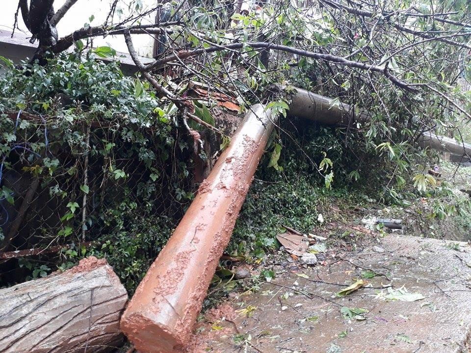 Một số hình ảnh bão số 12 tại Lâm Đồng