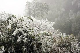 Dự báo thời tiết 17.12: Nhiệt độ Hà Nội thấp kỷ lục, vùng núi cao nguy cơ có băng giá