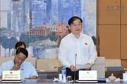 Cân nhắc bổ sung quy định người Việt Nam định cư ở nước ngoài là chủ rừng