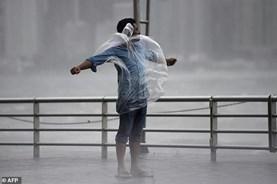 Chùm ảnh bão Hato càn quét gây ngập lụt và thiệt hại lớn