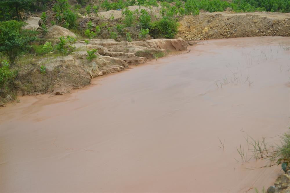 Hoàn nguyên thực địa, cải tạo môi trường hiện là từ xa xỉ tại Bồng Miêu