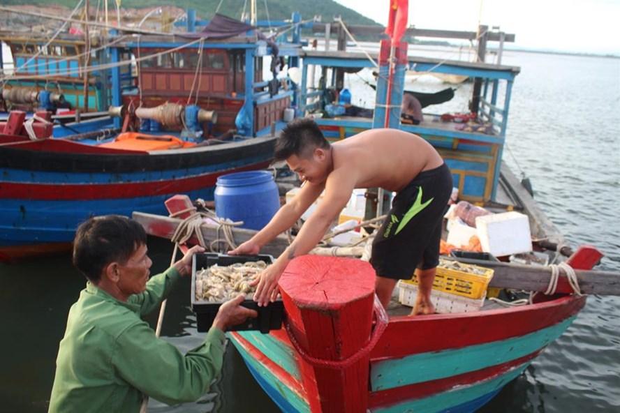 Tàu cá của ngư dân Trần Văn Lộc trúng đậm tôm, cá thu về 20 triệu sau một ngày ra khơi. Ảnh: TRẦN TUẤN