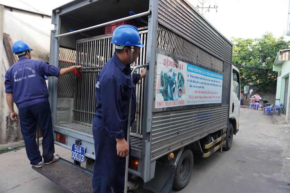 """Các nhân viên đội bắt chó thả rông khi làm nhiệm vụ mặc áo màu xanh ở sau áo có in chữ """"Chi cục Thú y Thành phố"""", xe chuyện dụng có biển số xanh."""