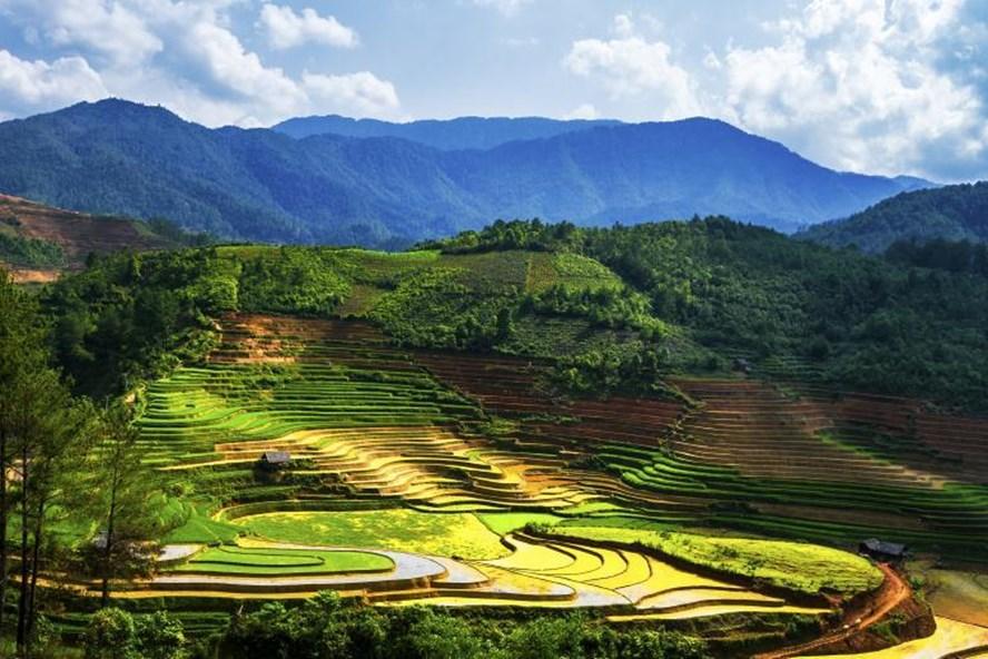 """5 điểm du lịch """"ngon, bổ, rẻ"""" trong khu vực Nam Á - ảnh 1"""