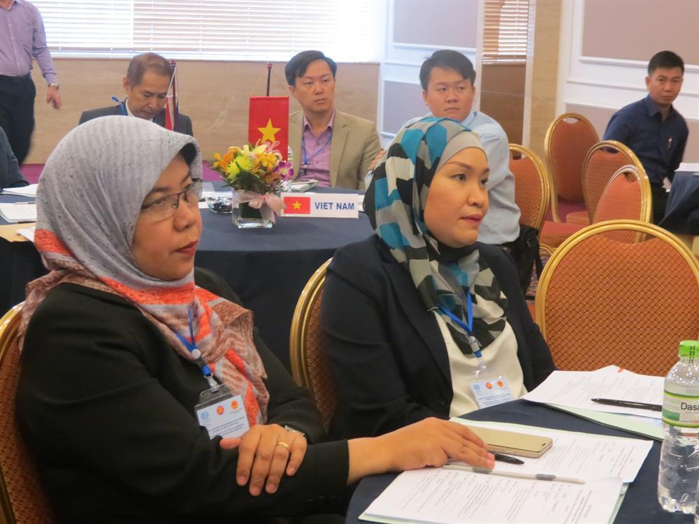 Đại diện các cơ quan Chính phủ, BHXH các nước ASEAN tham dự hội thảo tại TPHCM - Ảnh: L.T