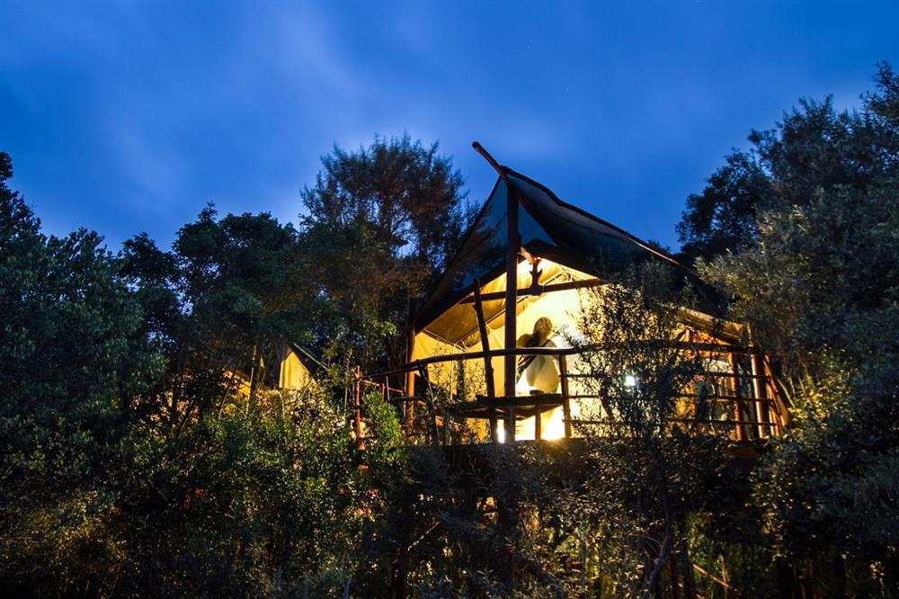 Nhà trên cây Teniqua Treehouse, Nam Phi có hai phòng ngủ riêng biệt và có sàn hành lang để bạn ngắm nhìn thiên nhiên hoang dã trong khi nhấm nháp những ly cocktail ngon tuyệt..