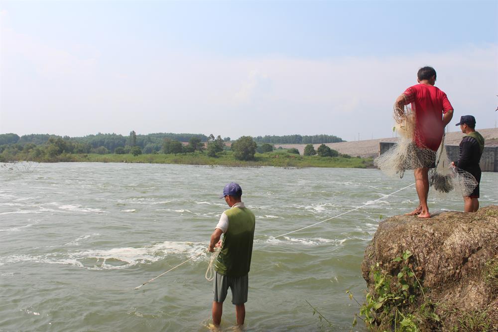 Lưu lượng nước xả qua tràn không lớn như những lần xả lũ trước do chỉ xả một cửa