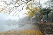 Dự báo thời tiết 21.1: Hà Nội và Bắc Bộ có mưa phùn và sương mù, oi nóng khó chịu