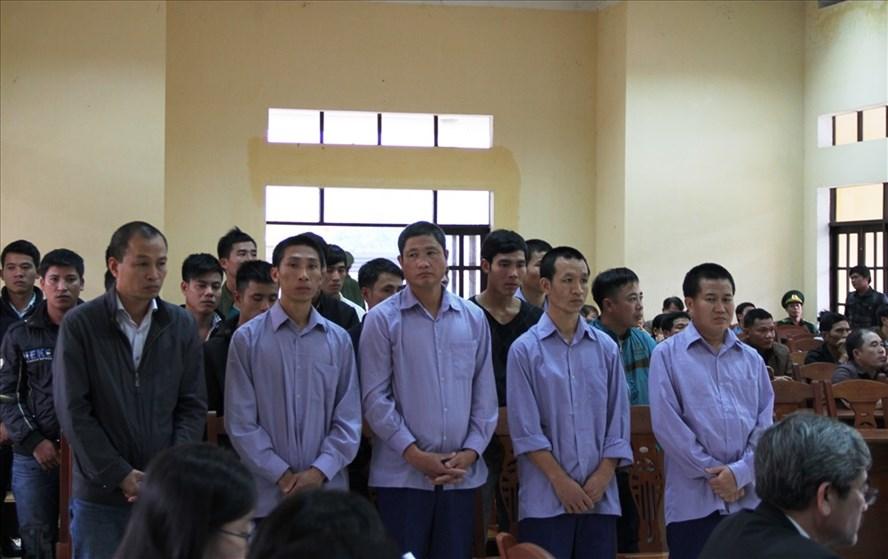 21 bị cáo liên quan đến vụ phá rừng pơ mu ở huyện Nam Giang (Quảng Nam) bị đưa ra xét xử. Ảnh: LP