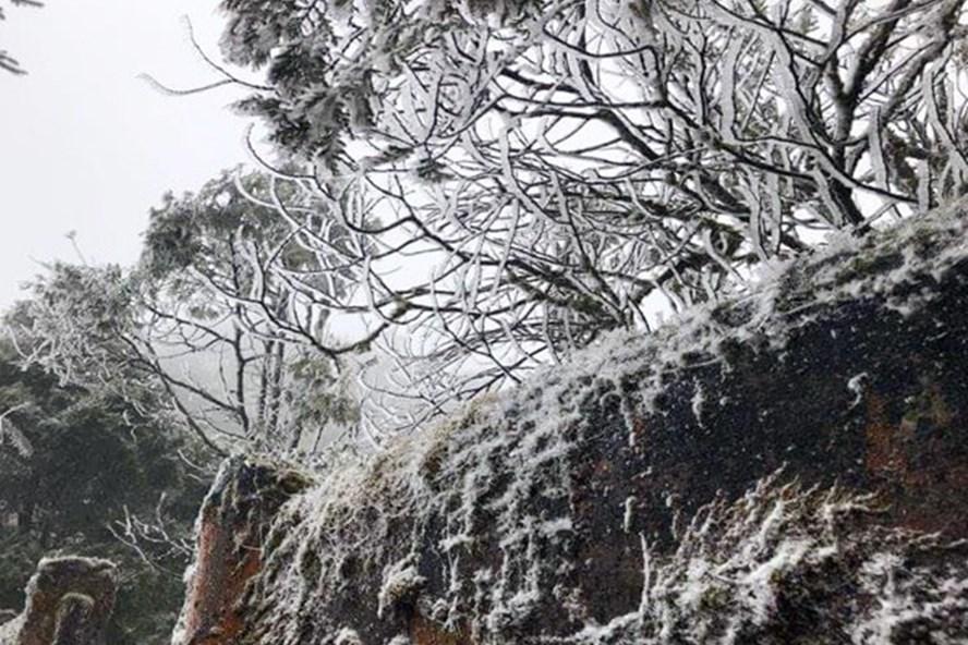 Nhiệt độ xuống thắp, băng tuyết phủ trắng tại Sa Pa (Lào Cai). Ảnh: Báo Lào Cai