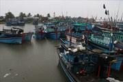 Ninh Thuận thông báo khẩn sẽ xả lũ do cơn bão số 8 gây ra