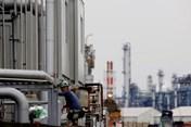 Nhật Bản phê duyệt nhiều cơ chế mới hỗ trợ lao động nước ngoài