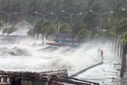 Chủ động ứng phó áp thấp nhiệt đới khả năng mạnh lên thành bão dịp Tết