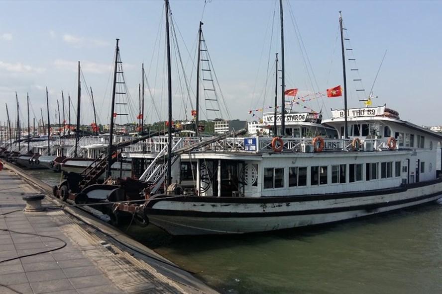 Âu thuyền số 2, cảng Tuần Châu - nơi thường xuyên xảy ra các vụ đắm tàu du lịch. Ảnh: NGUYỄN HÙNG