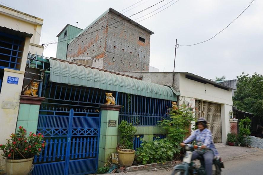 Một nhà nuôi chim yến trong khu dân cư đường An Phú Đông 3 (khu phố 5, phường An Phú Đông, Q.12, TP.Hồ Chí Minh). Ảnh: MINH QUÂN