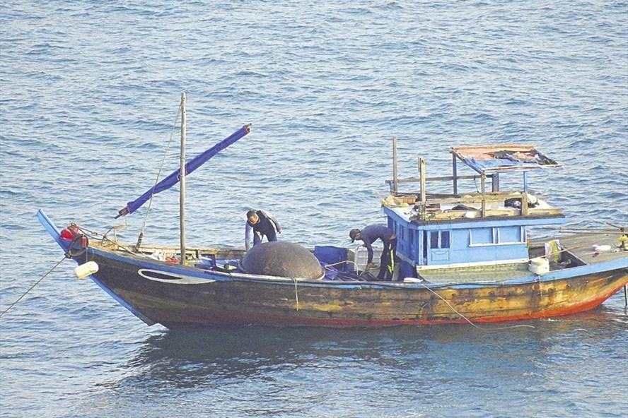 Tàu cá không số hiệu đánh bắt cá bằng thuốc nổ tại Sơn Trà. Ảnh: LPC