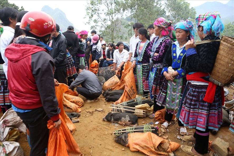 Góc bày bán lợn mán (hay còn gọi là lợn tên lửa) của những người phụ nữ Mông ở chợ phiên San Thàng.