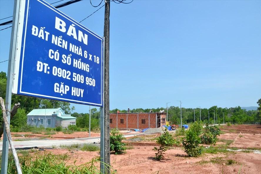 Cận cảnh lô đất phân nền ở xã Hàm Ninh. Ảnh: PVĐT