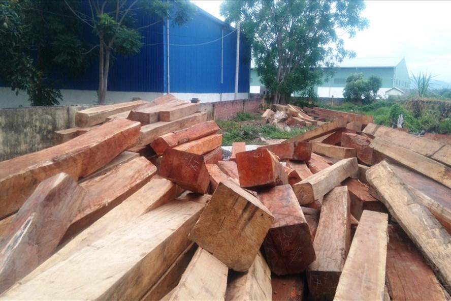 Số gỗ tại kho bãi của Cty Duy Nguyên.