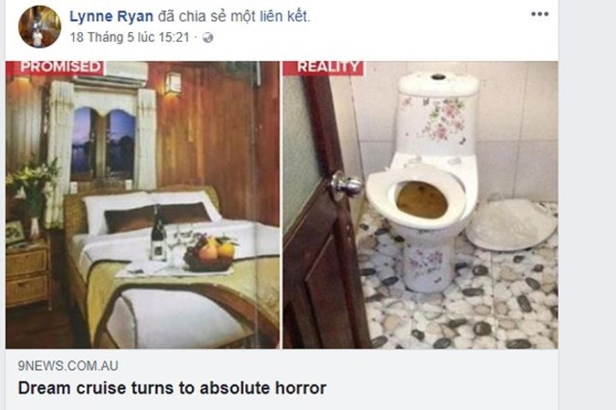"""Những sai phạm dẫn đến chất lượng """"kinh hoàng"""". Ảnh: Lynne Ryan"""