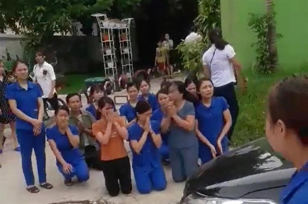 Vụ cô giáo mầm non quỳ gối, khóc lóc xin dạy: Bộ GD&ĐT yêu cầu báo cáo 1