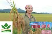"""Quảng cáo """"láo"""" khiến nông dân thiệt hại 600 tỉ đồng, doanh nghiệp nói gì?"""