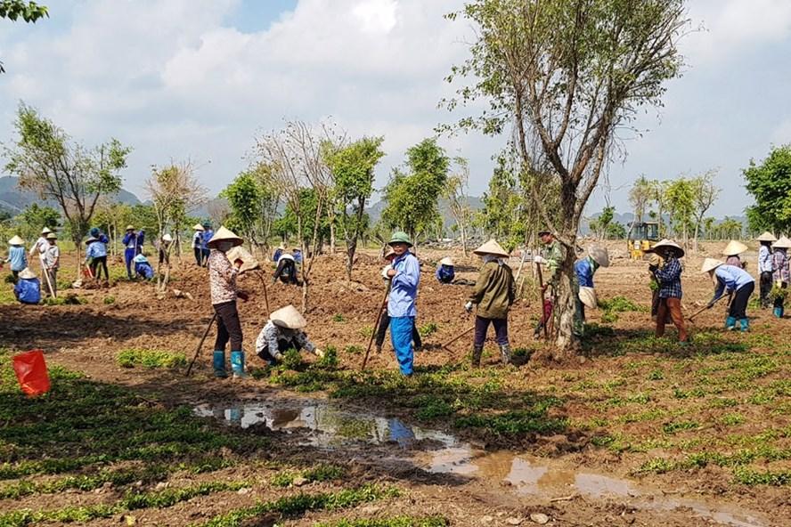 CĐCS Khu du lịch Sinh thái Tràng An tổ chức cho đoàn viên và người lao động tham gia dọn vệ sinh môi trường và trồng hoa dọc tuyến đường vào Khu du lịch Sinh thái Tràng An.