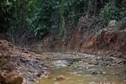 Vụ nước sạch sông Đà: Tạm giữ khẩn cấp 2 đối tượng nghi đổ trộm dầu thải