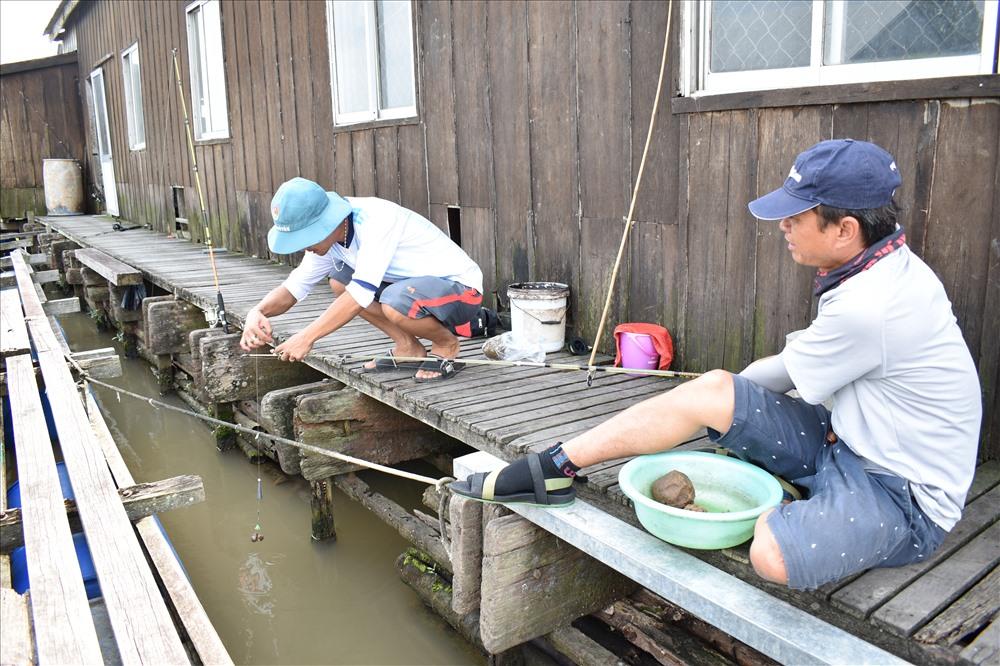 Khách du lịch câu cá và trải nghiệm cho cá koi ăn. Ảnh: Thành Nhân