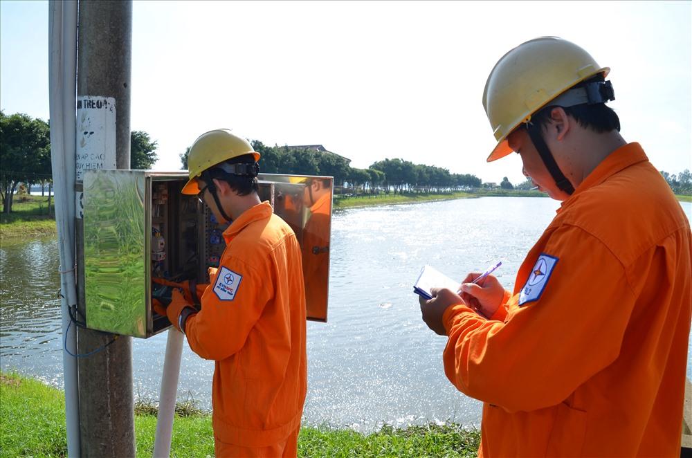 Kiểm tra lưới điện phục vụ các vùng nuôi cá tra ở Đồng Tháp - Ảnh: PV