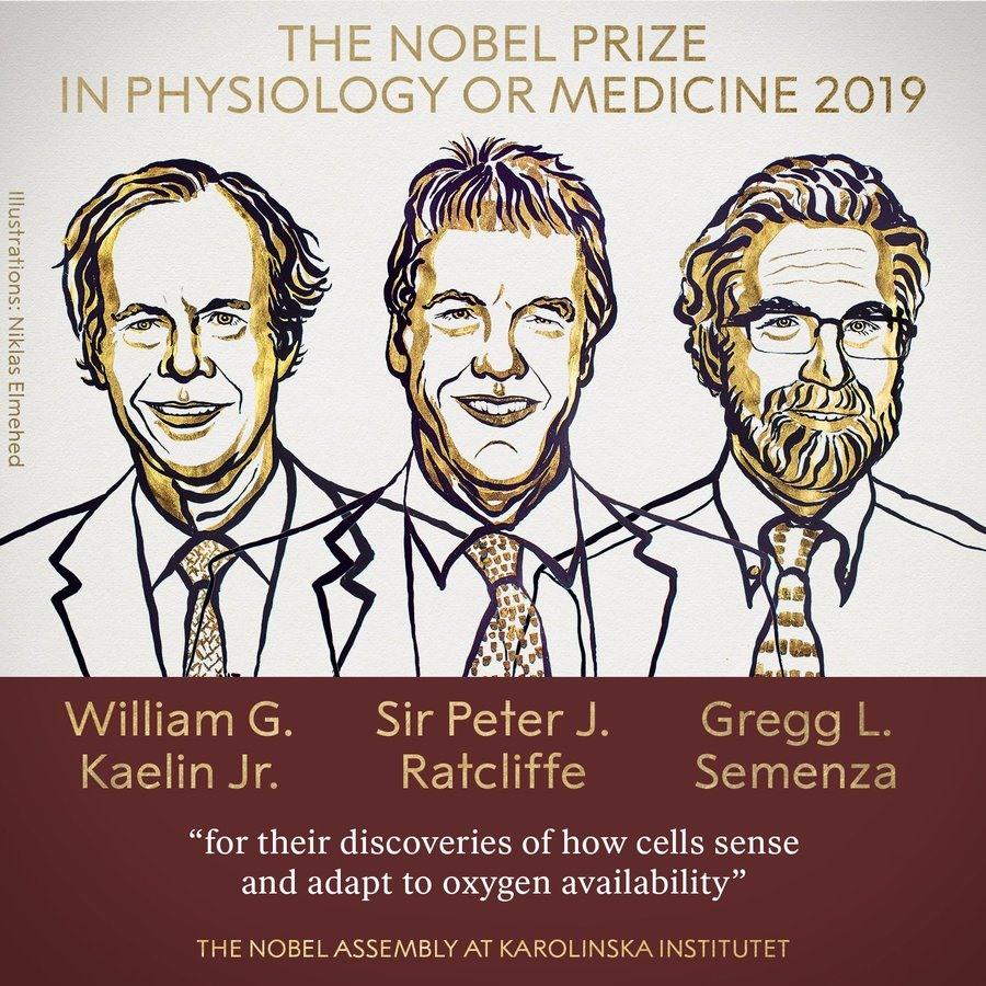 Ba nhà khoa học giành giải Nobel Y học 2019. Ảnh: Nobel Prize.