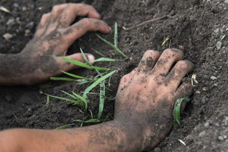 Tiếp xúc trực tiếp với bùn đất sẽ có nguy cơ cao nhiễm vi khuẩn Whitmore. Ảnh: Supplied.