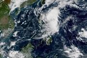 Tin bão mới nhất: Ngày mai, bão Kalmaegi sẽ suy yếu thành áp thấp