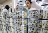Tỷ giá ngoại tệ 22.11: Tỷ giá trung tâm tăng vọt, vàng khởi sắc