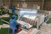 Chào giá cung cấp axit humic Trung Quốc phục vụ SX nhà máy phân bón