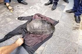Người đàn ông bắt được rùa hơn 10kg ở Hồ Gươm