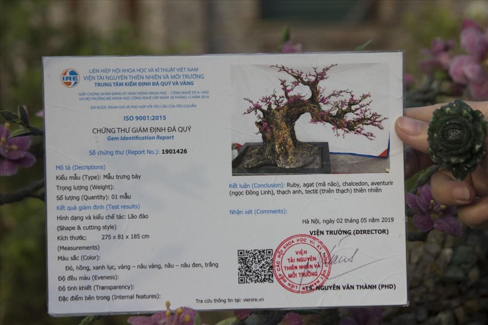 Chứng nhận đá quý được cấp bởi Trung tâm kiểm định đá quý và vàng của viện Tài nguyên Thiên nhiên và Môi trường. Số đá quý được nhập ở Lục Yên - Yên Bái, quê của một thành viên trong đoàn.