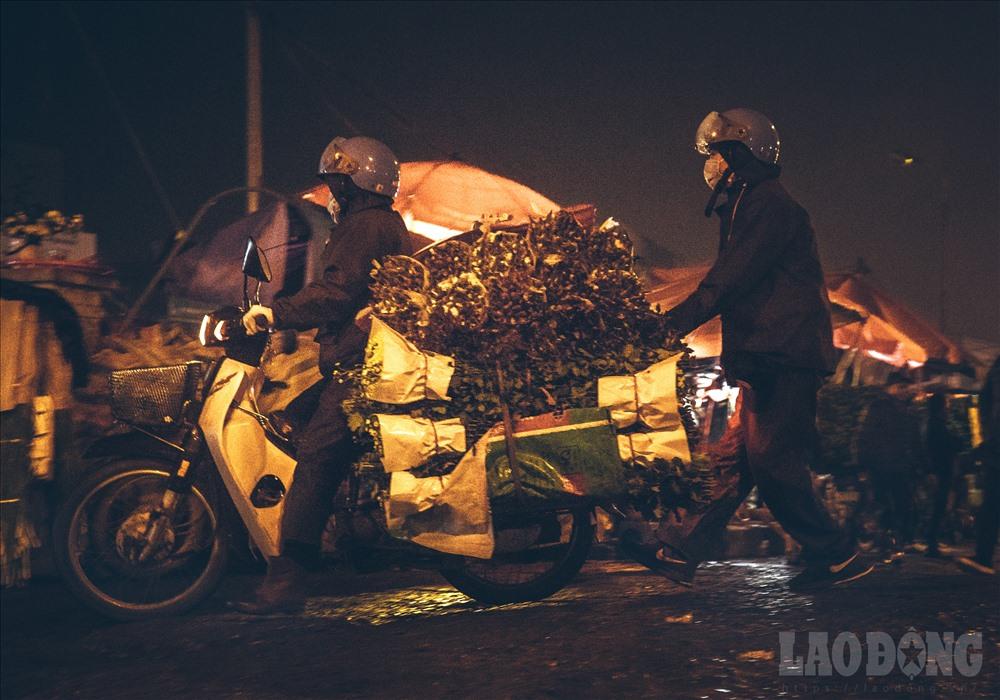 Cứ từ 23h trở đi, nơi đây luôn tấp nập xe to xe nhỏ từ khắp các vùng lân cận đổ về, chủ yếu hoa được bán cho thương lái cũng như các gian hàng ở đây.