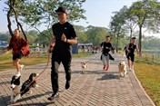 Trải nghiệm cuộc thi chạy cùng cún cưng độc đáo nhất Hà Nội