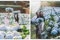 Đến Đà Lạt, nhất định không nên bỏ lỡ những vườn hoa đẹp nức tiếng này