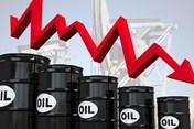 Giá dầu hôm nay 14.5: Chứng khoán đi xuống, giá dầu giảm