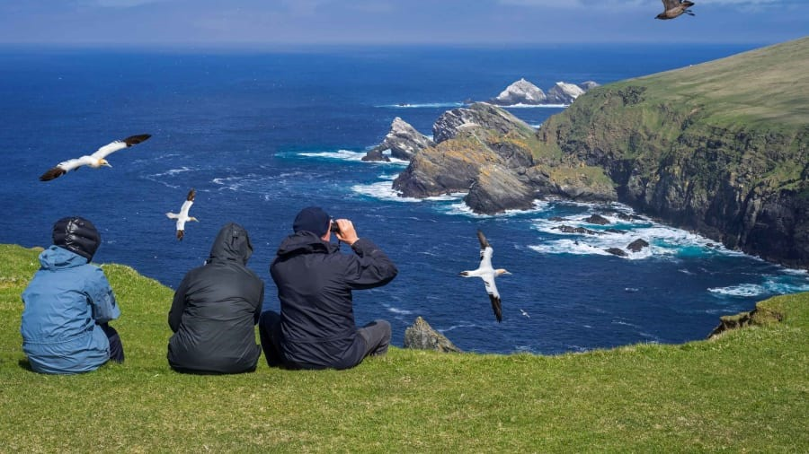 Shetland, Scotland: Visitors to these remote islands can immerse themselves in nature. The Shetland Islands are known for their incredible sea birds -- including gannets and great skua, pictured here. Shutterstock