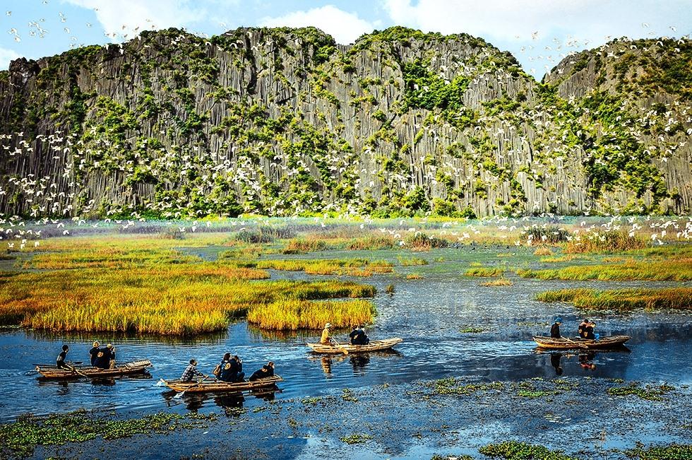 Vẻ hoang sơ của Khu bảo tồn đất ngập nước Vân Long. Ảnh: MT