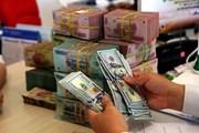 VND đã giảm giá bao nhiêu so với USD từ đầu năm đến nay?